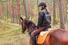 AdventureRide equestrian horseback riding vacations